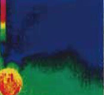 ②赤外線カメラで撮影すると、右側から水が廻っている痕跡があり。